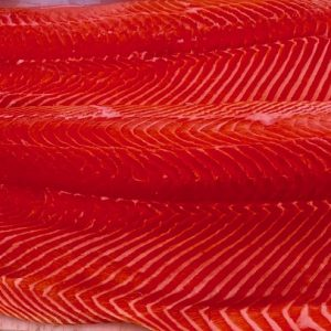 fresh-scottish-salmon-order-online-schedule-pickup-oceanside-harbor-california
